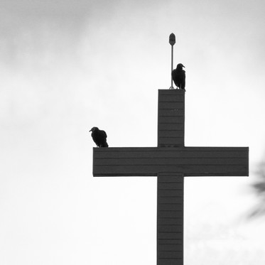 Entre a vida e a morte