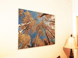 Aluminum-Background  16x24.jpg