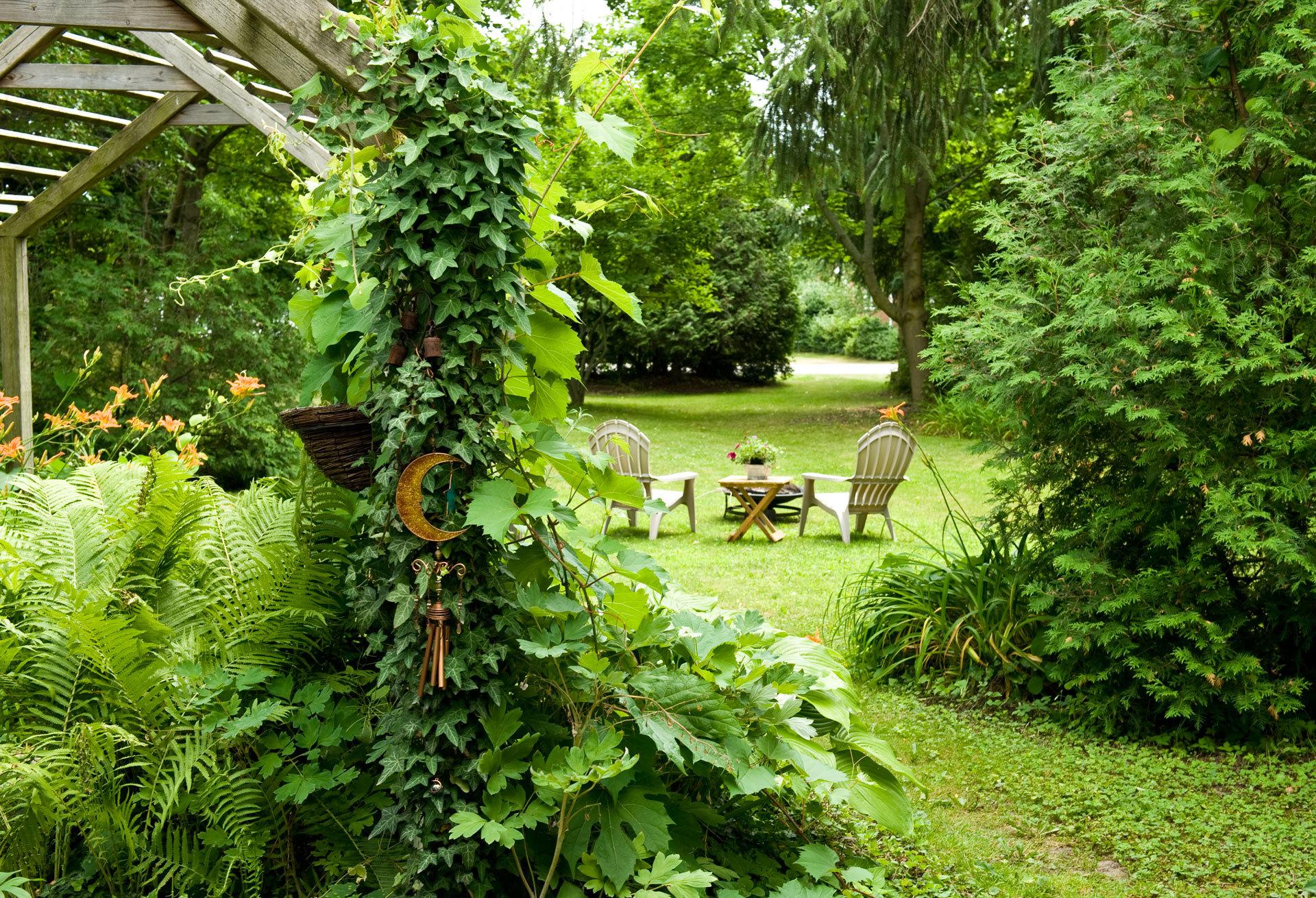 BnB Backyard