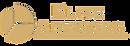 Logo Elite Advisors Transparente_edited.