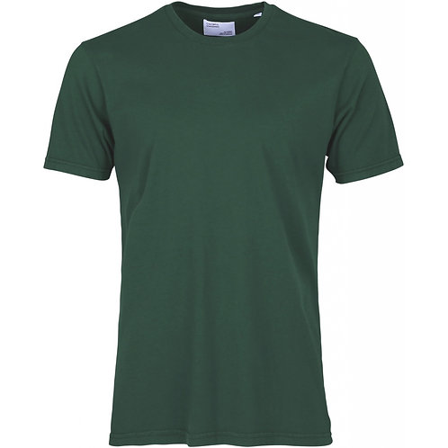 Colorful standard - classic organic tee emerald green