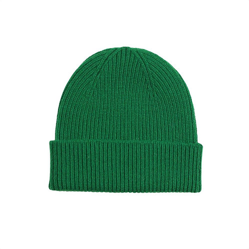 Colorful standard - beanie kelly green