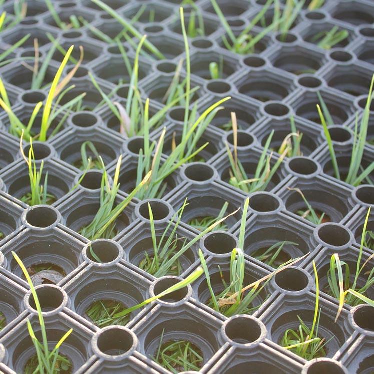 Grass-Matting.jpg