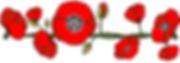 filet5-tt-width-875-height-306-fill-0-cr