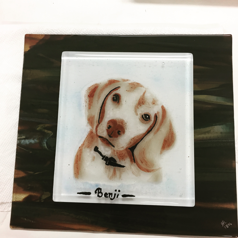 Dog--Benji