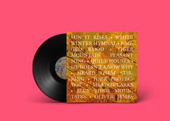 Fleet Foxes Vinyl Back