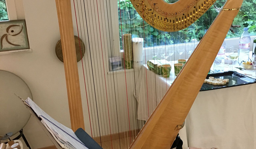 harp close up.jpg