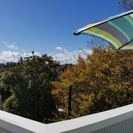 Western treetop view from dining deck