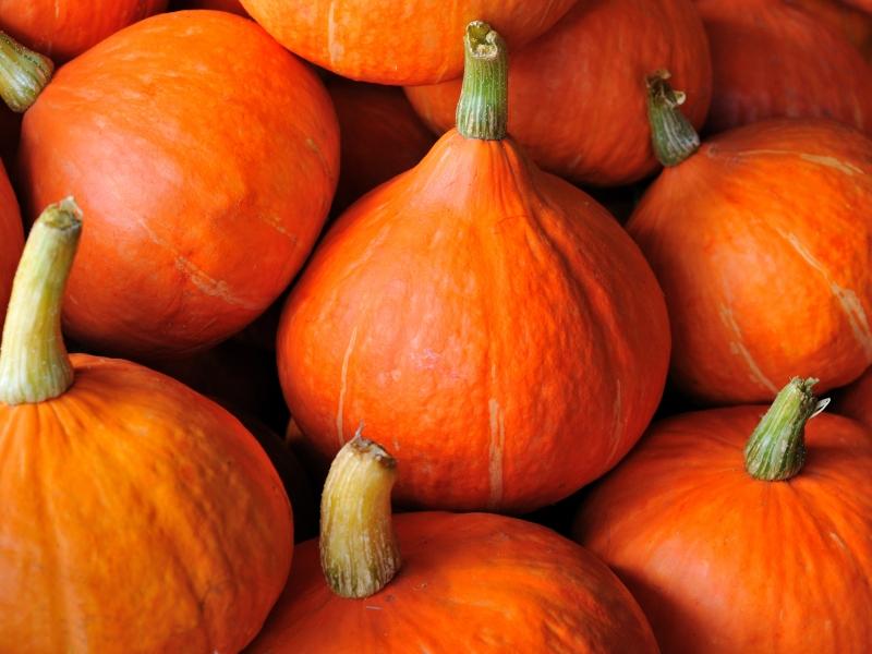 pompoen oranje