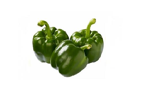 Paprika Groen 1stk