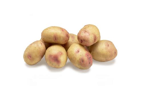 BIO Aardappel Carolus 1KG