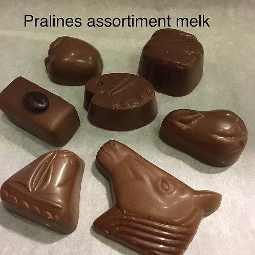 Pralines melk-chocolade