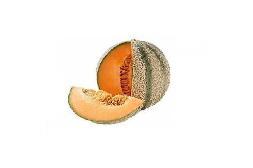 BIO Meloen Charentais