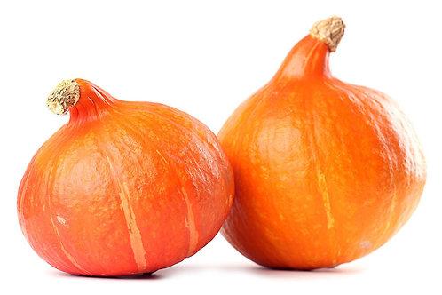 BIO Pompoen oranje klein, stuk