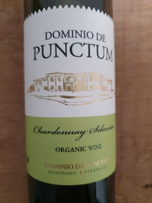 Punctum, chardonnay seleccion 2018, wit