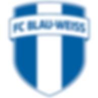 FC_Blau_Weiß_Leipzig_-_Facebook_-_Titelb
