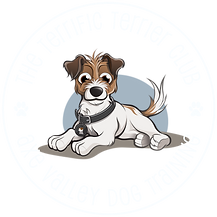 terrific terrier club logo light.png
