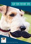 Top 10 Terrier Tips.png