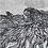 Thumbnail: Trois tresses/Randrana telo