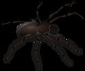 Araignée, illustre le roman de SF La Passion de l'Arachnee