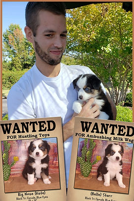 Roxys litter Wanted posters-030.jpg