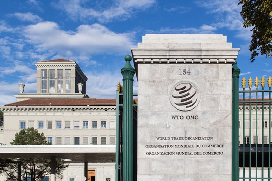 Amicus Curiae Briefs in WTO Disputes: An Opportunity for Participation