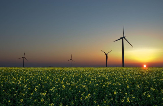 The EU's Renewable Energy Directive - Consistent with WTO Rules?