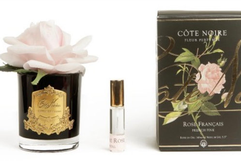 Côte Noire | French Rose | French Pink | Black Vessel