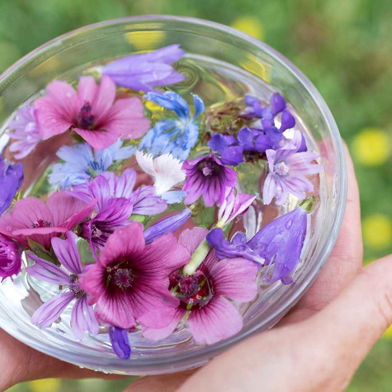 What is a flower essence? - Morning class