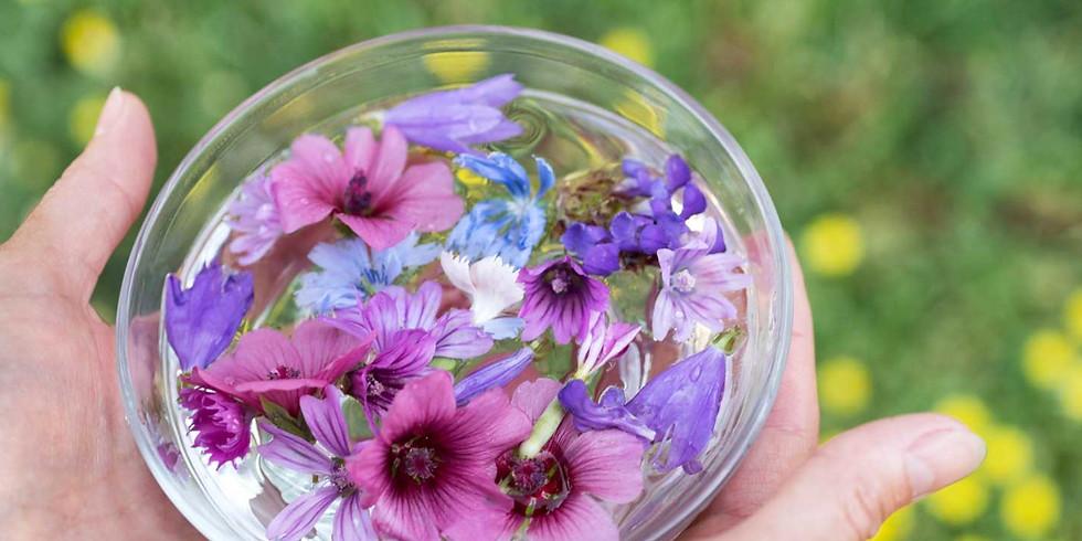 What is a flower essence? - Evening class