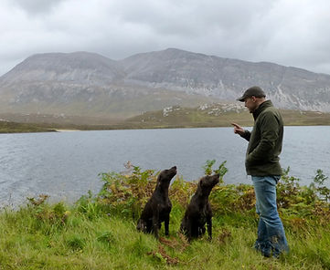 My dogs, Arkle and Stack infront of Loch Stack and Arkle in the background.