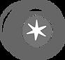 Swirl Grey snowflake@3x.png