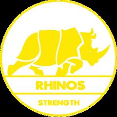 Rhinos logo.png