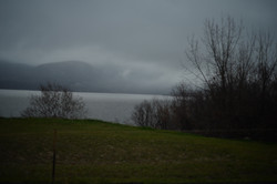 Between the Mist