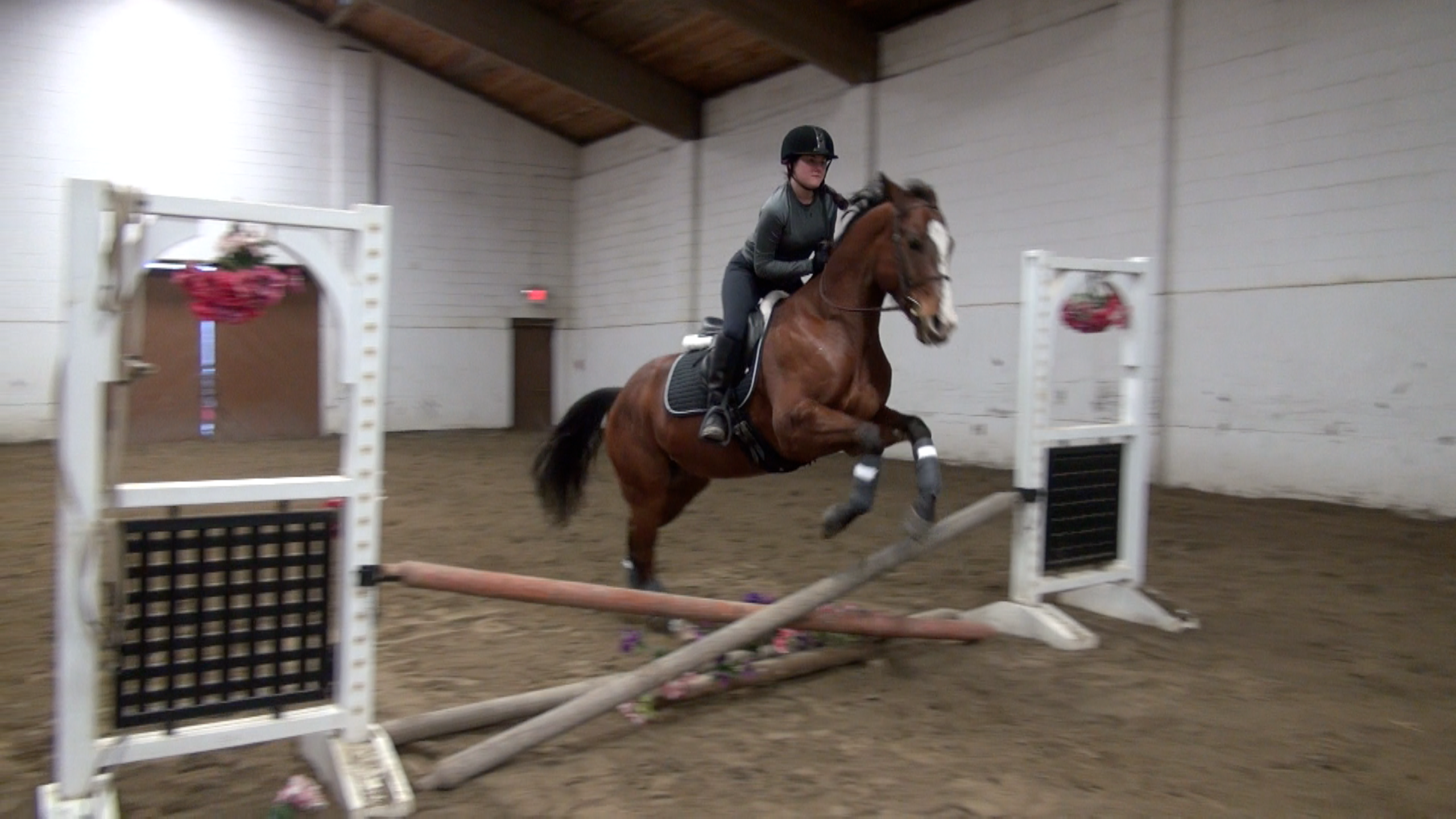 Karlee jumping cross rails on Kiss
