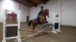 Karlee jumping cross rails on Kiss