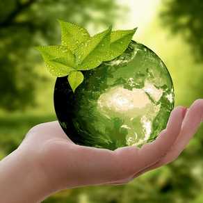 7 Fun Ways to Teach Your Friends About Sustainable Living