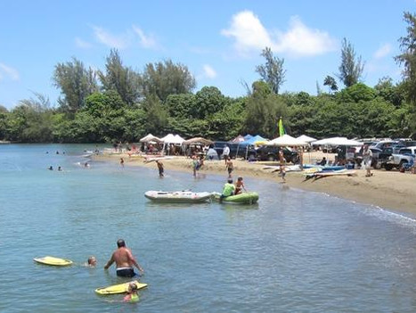 Identifying Sources of Contamination in Hanalei Bay