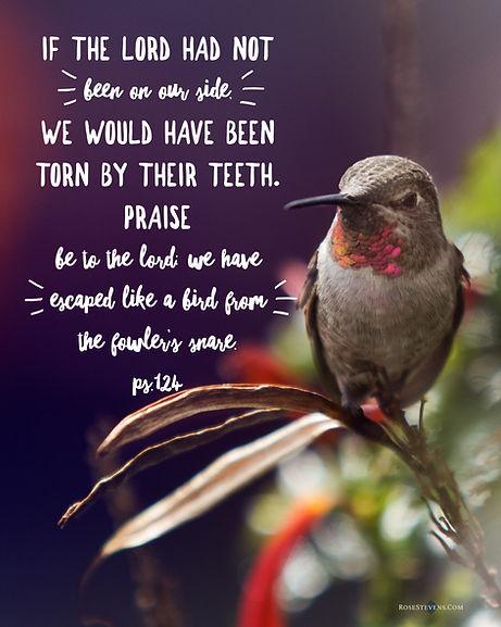 Psalm 124.rs.JPG