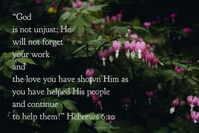 Hebrews 6.10.JPG