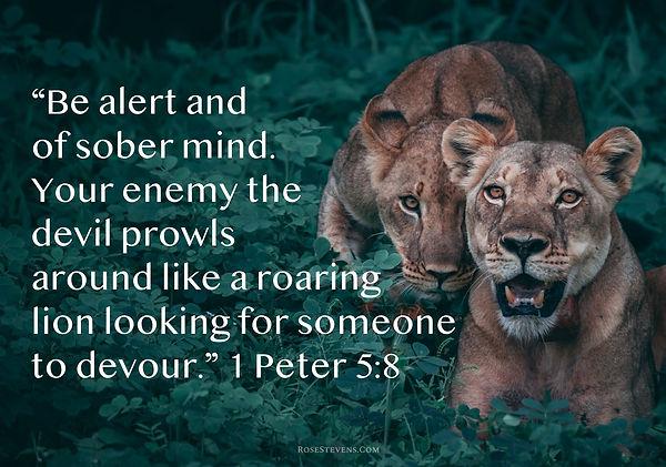 I Peter 5.8.JPG