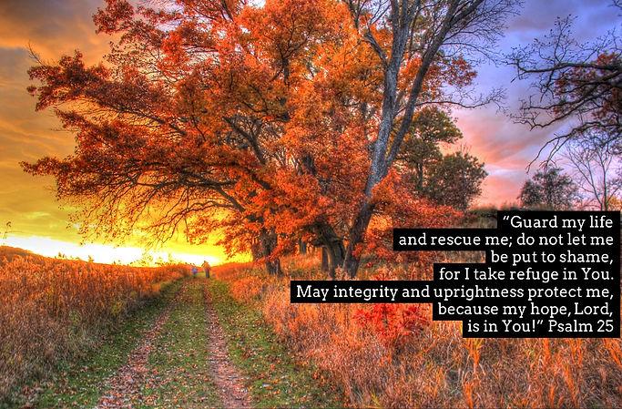 Psalm 25.JPG
