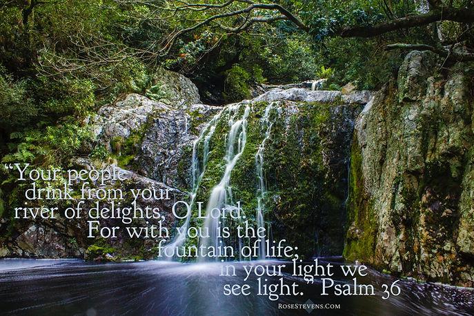 Psalm 36.JPG