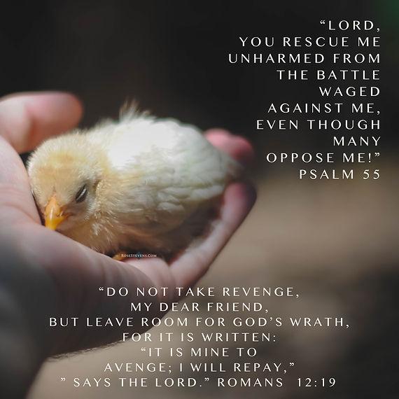 Romans 12.19.JPG
