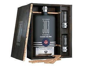 Squadron 303 Vodka 3.PNG