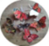 motýli_005_kopie.jpg