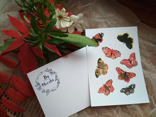 Pohled motýli