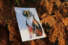 Čučulína Mišulína pohled 10x15 cm