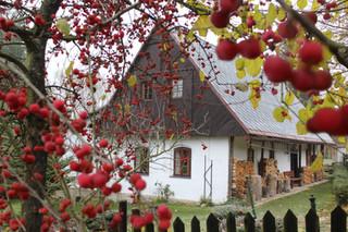 Chaloupka s jablíčky