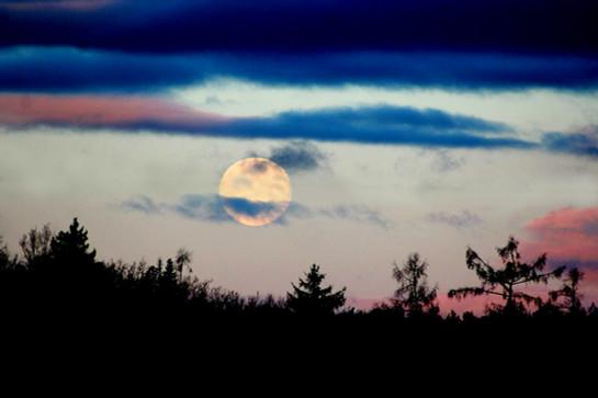 Měsíc zapadá za les